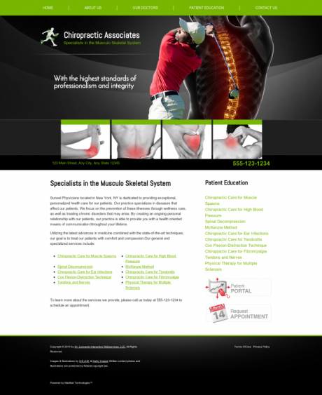 Chiropractic Website Preview #4